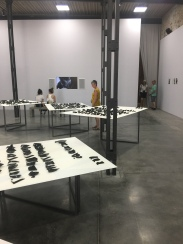 Mexico The life in the folds Commissioner: Gabriela Gil Verenzuela Curator: Pablo León de la Barra Exhibitor: Carlos Amorales | 57th International Art Exhibition — la Biennale di Venezia